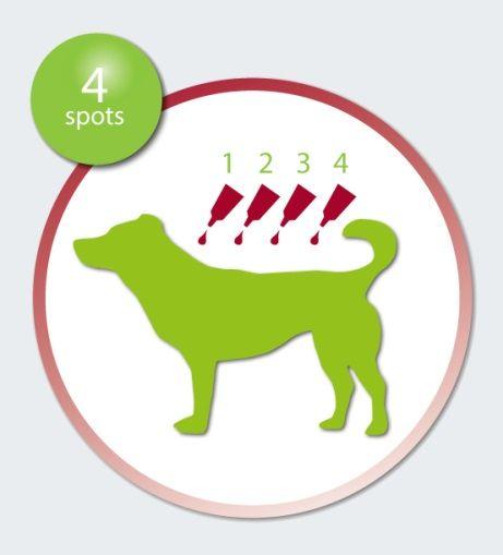 http://cdn.shopify.com/s/files/1/0240/9255/files/how-to-apply-advantix-dog.jpg?7869677009094669037